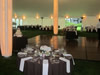 Specialty Tent Lighting