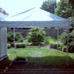 10' Wide, frame tent, tent with no center pole, white canopy, party tent